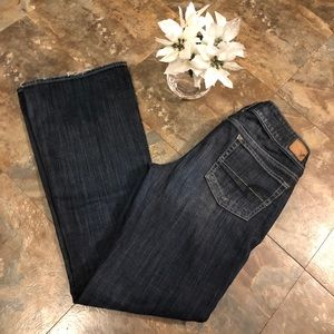 American Eagle AE 12 LONG jeans Artist Stretch